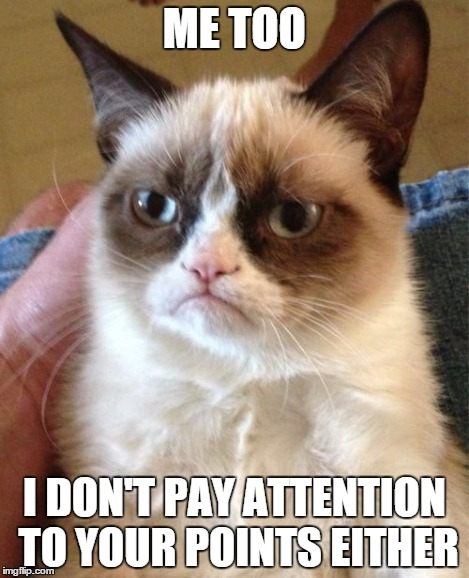 Grumpy Cat Meme | ME TOO I DON'T PAY ATTENTION TO YOUR POINTS EITHER | image tagged in memes,grumpy cat | made w/ Imgflip meme maker