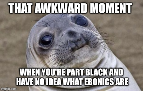 Awkward Moment Sealion Meme | THAT AWKWARD MOMENT WHEN YOU'RE PART BLACK AND HAVE NO IDEA WHAT EBONICS ARE | image tagged in memes,awkward moment sealion | made w/ Imgflip meme maker