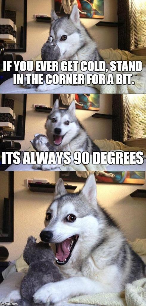 Bad Pun Dog Meme | IF YOU EVER GET COLD, STAND IN THE CORNER FOR A BIT. ITS ALWAYS 90 DEGREES | image tagged in memes,bad pun dog | made w/ Imgflip meme maker