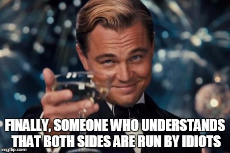 Leonardo Dicaprio Cheers Meme | FINALLY, SOMEONE WHO UNDERSTANDS THAT BOTH SIDES ARE RUN BY IDIOTS | image tagged in memes,leonardo dicaprio cheers | made w/ Imgflip meme maker