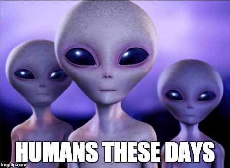 Humans These Days | HUMANS THESE DAYS | image tagged in humans these days | made w/ Imgflip meme maker