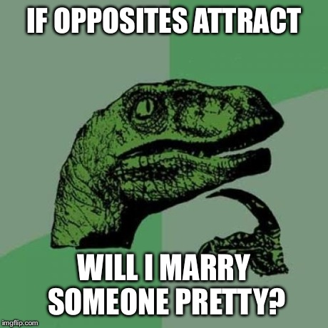 Philosoraptor Meme | IF OPPOSITES ATTRACT WILL I MARRY SOMEONE PRETTY? | image tagged in memes,philosoraptor | made w/ Imgflip meme maker