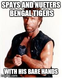 SPAYS AND NUETERS BENGAL TIGERS WITH HIS BARE HANDS | made w/ Imgflip meme maker