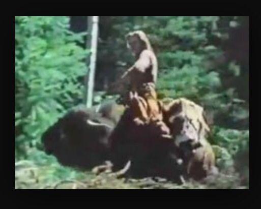 6df1948b Happy birthday from the guy on a buffalo Meme Generator - Imgflip