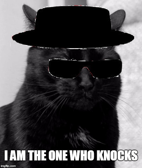 I AM THE ONE WHO KNOCKS | image tagged in memes,black cat pissed,pissed cat,heisenberg,breaking bad,i am the one who knocks | made w/ Imgflip meme maker