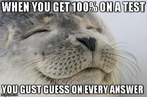 Satisfied Seal Meme | WHEN YOU GET 100% ON A TEST YOU GUST GUESS ON EVERY ANSWER | image tagged in memes,satisfied seal | made w/ Imgflip meme maker
