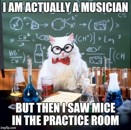 Chemistry Cat | I AM ACTUALLY A MUSICIAN BUT THEN I SAW MICE IN THE PRACTICE ROOM | image tagged in memes,chemistry cat | made w/ Imgflip meme maker