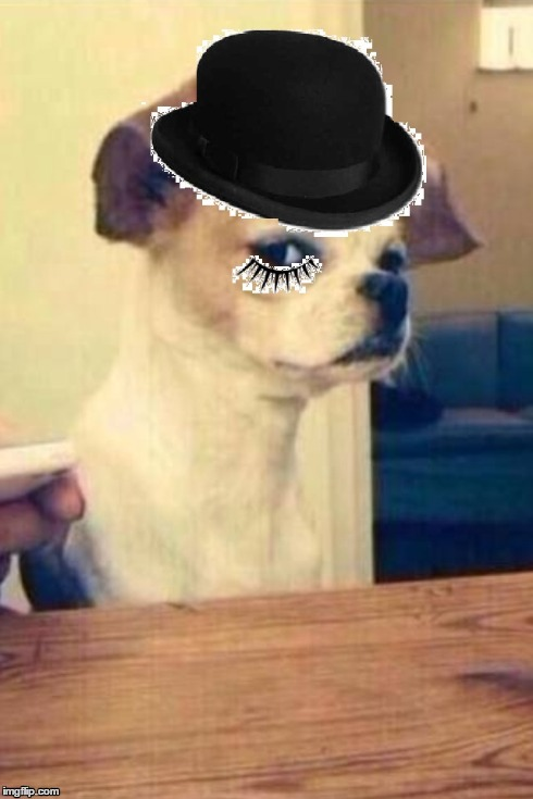 image tagged in memes,mexico dog,clockwork orange | made w/ Imgflip meme maker