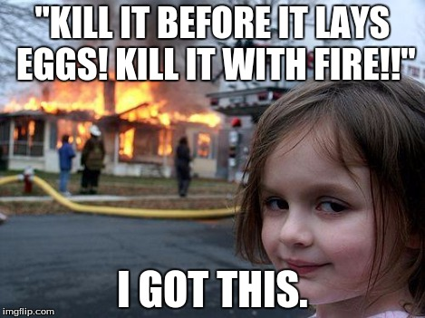 "Disaster Girl Meme | ""KILL IT BEFORE IT LAYS EGGS! KILL IT WITH FIRE!!"" I GOT THIS. 