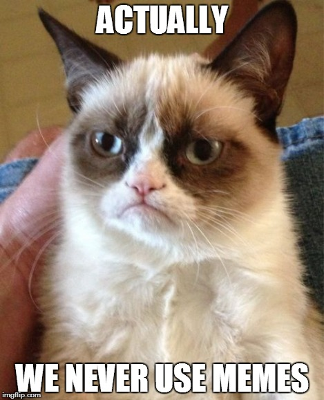 Grumpy Cat Meme | ACTUALLY WE NEVER USE MEMES | image tagged in memes,grumpy cat | made w/ Imgflip meme maker