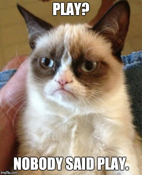 Grumpy Cat Meme | PLAY? NOBODY SAID PLAY. | image tagged in memes,grumpy cat | made w/ Imgflip meme maker