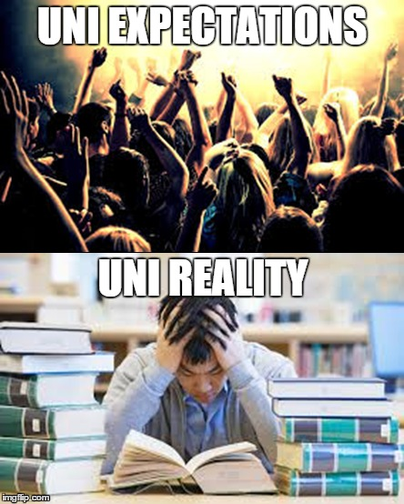 Uni expectations vs reality | UNI EXPECTATIONS UNI REALITY | image tagged in uni,university,college | made w/ Imgflip meme maker