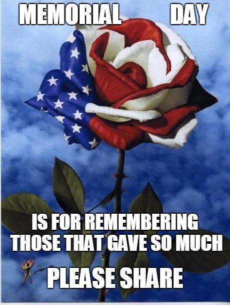 ltqed memorial day rose imgflip