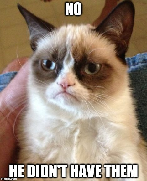Grumpy Cat Meme | NO HE DIDN'T HAVE THEM | image tagged in memes,grumpy cat | made w/ Imgflip meme maker