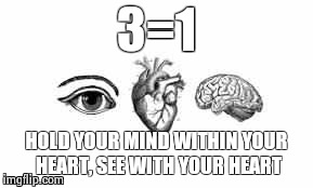 You have a heart for a reason.... | 3=1 HOLD YOUR MIND WITHIN YOUR HEART, SEE WITH YOUR HEART | image tagged in heart,mind,eye,unity | made w/ Imgflip meme maker