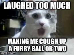 omg cat 2 | LAUGHED TOO MUCH MAKING ME COUGH UP A FURRY BALL OR TWO | image tagged in omg cat 2 | made w/ Imgflip meme maker