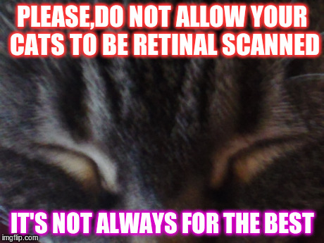 retinal  | PLEASE,DO NOT ALLOW YOUR CATS TO BE RETINAL SCANNED IT'S NOT ALWAYS FOR THE BEST | image tagged in biology,cats,eyes | made w/ Imgflip meme maker