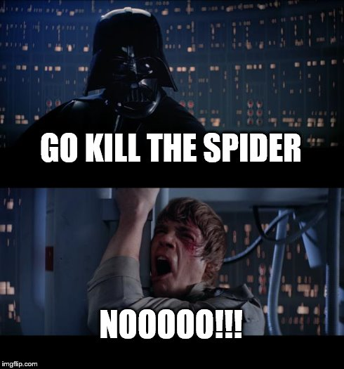 Star Wars No Meme | GO KILL THE SPIDER NOOOOO!!! | image tagged in memes,star wars no | made w/ Imgflip meme maker