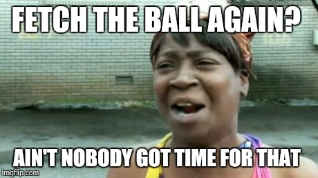 Aint Nobody Got Time For That Meme | FETCH THE BALL AGAIN? AIN'T NOBODY GOT TIME FOR THAT | image tagged in memes,aint nobody got time for that | made w/ Imgflip meme maker