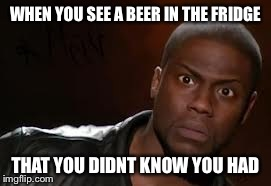 Kevin Hart Meme | WHEN YOU SEE A BEER IN THE FRIDGE THAT YOU DIDNT KNOW YOU HAD | image tagged in memes,kevin hart the hell | made w/ Imgflip meme maker
