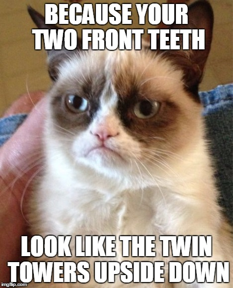 Grumpy Cat Meme | BECAUSE YOUR TWO FRONT TEETH LOOK LIKE THE TWIN TOWERS UPSIDE DOWN | image tagged in memes,grumpy cat | made w/ Imgflip meme maker