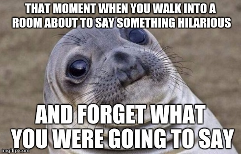 Awkward Moment Sealion Meme | THAT MOMENT WHEN YOU WALK INTO A ROOM ABOUT TO SAY SOMETHING HILARIOUS AND FORGET WHAT YOU WERE GOING TO SAY | image tagged in memes,awkward moment sealion | made w/ Imgflip meme maker