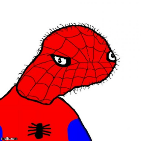 spoderman | image tagged in spoderman | made w/ Imgflip meme maker