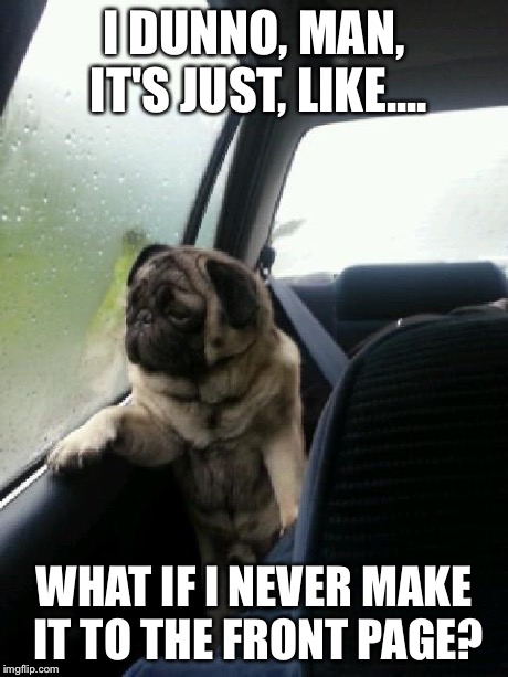 Introspective Pug on Imgflip | I DUNNO, MAN, IT'S JUST, LIKE.... WHAT IF I NEVER MAKE IT TO THE FRONT PAGE? | image tagged in introspective pug | made w/ Imgflip meme maker