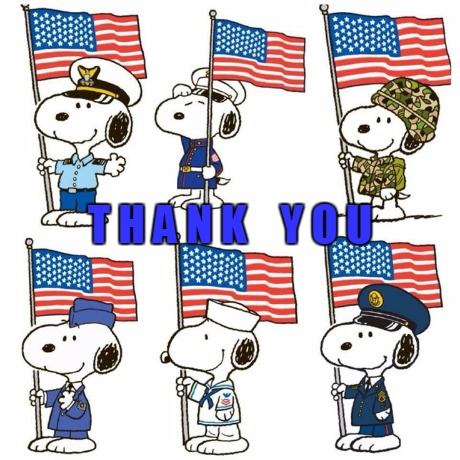 Thank You | T H A N K    Y O U | image tagged in memorial day | made w/ Imgflip meme maker