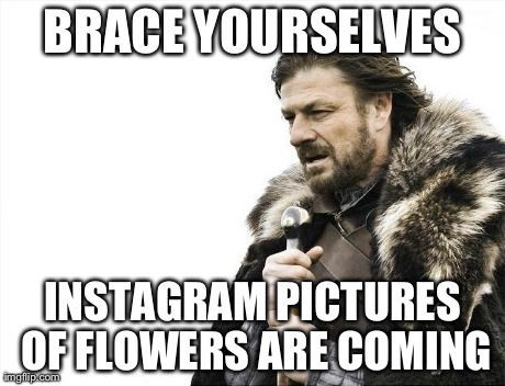 Brace Yourselves X is Coming Meme | BRACE YOURSELVES INSTAGRAM PICTURES OF FLOWERS ARE COMING | image tagged in memes,brace yourselves x is coming,AdviceAnimals | made w/ Imgflip meme maker