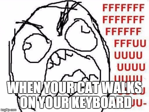 FFFFFFFUUUUUUUUUUUU | WHEN YOUR CAT WALKS ON YOUR KEYBOARD | image tagged in memes,fffffffuuuuuuuuuuuu | made w/ Imgflip meme maker