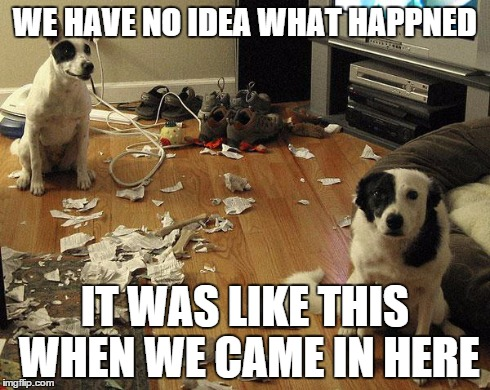 guiltydogs | WE HAVE NO IDEA WHAT HAPPNED IT WAS LIKE THIS WHEN WE CAME IN HERE | image tagged in guiltydogs | made w/ Imgflip meme maker
