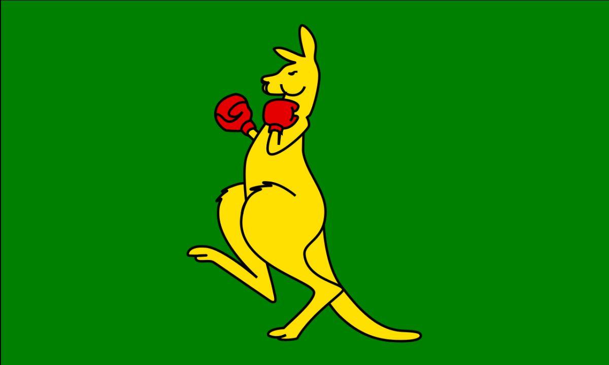 boxing kangaroo blank template imgflip