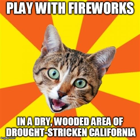 Bad Advice Cat Meme | PLAY WITH FIREWORKS IN A DRY, WOODED AREA OF DROUGHT-STRICKEN CALIFORNIA | image tagged in memes,bad advice cat | made w/ Imgflip meme maker