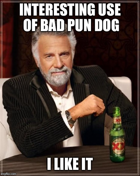 The Most Interesting Man In The World Meme | INTERESTING USE OF BAD PUN DOG I LIKE IT | image tagged in memes,the most interesting man in the world | made w/ Imgflip meme maker