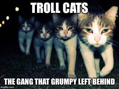 wrong neighborhood cats | TROLL CATS THE GANG THAT GRUMPY LEFT BEHIND | image tagged in wrong neighborhood cats | made w/ Imgflip meme maker