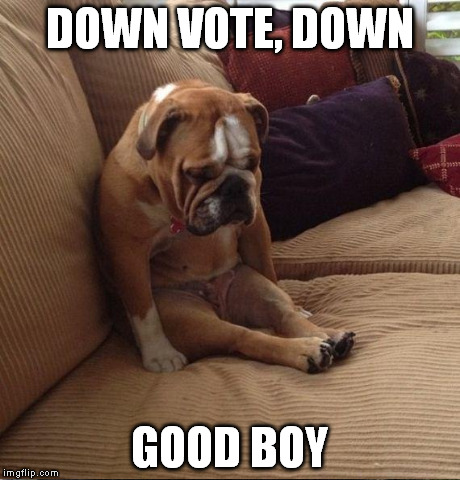 DOWN VOTE, DOWN GOOD BOY | made w/ Imgflip meme maker