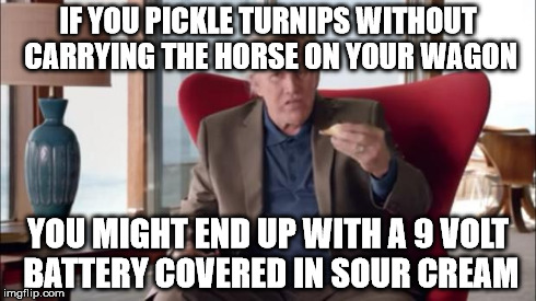 Gary Busey Wisdom | IF YOU PICKLE TURNIPS WITHOUT CARRYING THE HORSE ON YOUR WAGON YOU MIGHT END UP WITH A 9 VOLT BATTERY COVERED IN SOUR CREAM | image tagged in gary busey wisdom,sfw,say what,wut,lol | made w/ Imgflip meme maker