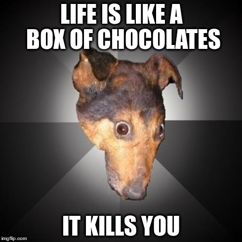 Depression Dog | LIFE IS LIKE A BOX OF CHOCOLATES IT KILLS YOU | image tagged in memes,depression dog | made w/ Imgflip meme maker