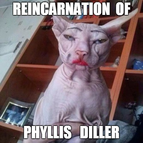Phyllis Diller Imgflip