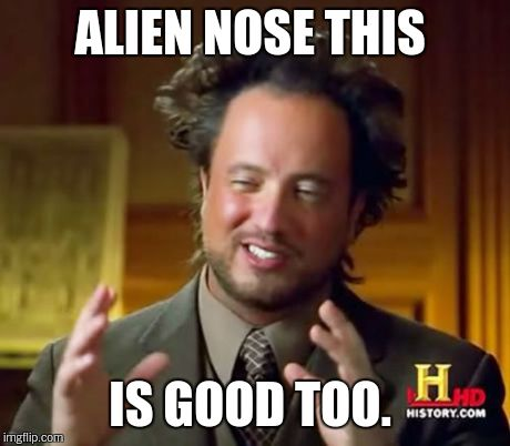Ancient Aliens Meme | ALIEN NOSE THIS IS GOOD TOO. | image tagged in memes,ancient aliens | made w/ Imgflip meme maker