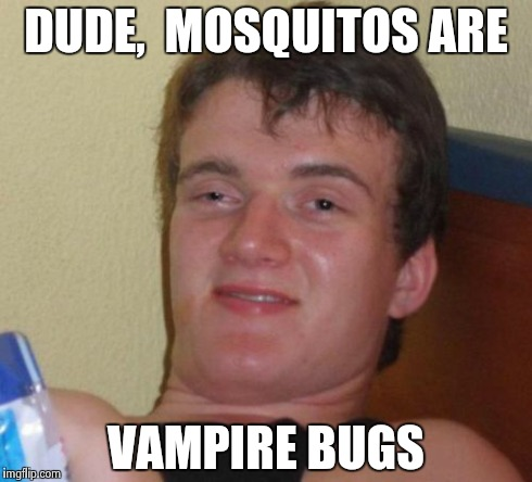 10 Guy Meme | DUDE,  MOSQUITOS ARE VAMPIRE BUGS | image tagged in memes,10 guy | made w/ Imgflip meme maker