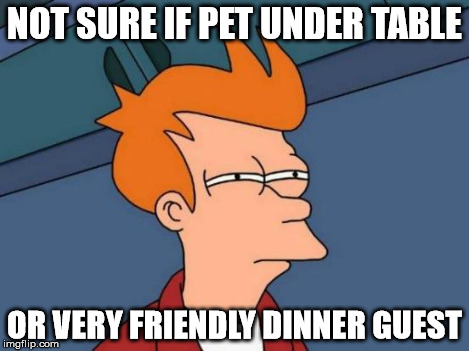 Futurama Fry Meme | NOT SURE IF PET UNDER TABLE OR VERY FRIENDLY DINNER GUEST | image tagged in memes,futurama fry | made w/ Imgflip meme maker