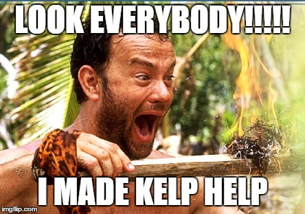 Castaway Fire Meme | LOOK EVERYBODY!!!!! I MADE KELP HELP | image tagged in memes,castaway fire | made w/ Imgflip meme maker