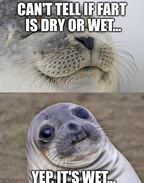 Short Satisfaction VS Truth Meme | CAN'T TELL IF FART IS DRY OR WET... YEP, IT'S WET... | image tagged in memes,short satisfaction vs truth | made w/ Imgflip meme maker