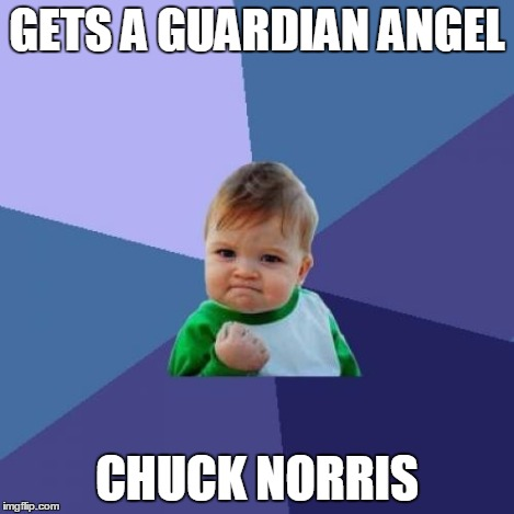 Success Kid Meme | GETS A GUARDIAN ANGEL CHUCK NORRIS | image tagged in memes,success kid | made w/ Imgflip meme maker