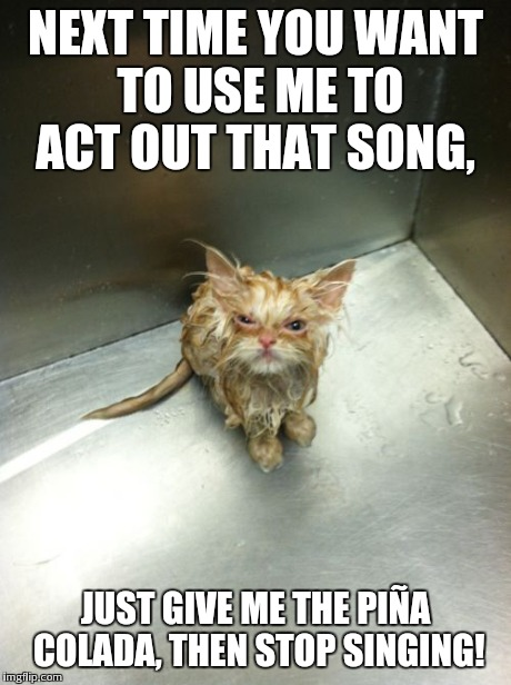 Kill You Cat Meme | NEXT TIME YOU WANT TO USE ME TO ACT OUT THAT SONG, JUST GIVE ME THE PIÑA COLADA, THEN STOP SINGING! | image tagged in memes,kill you cat | made w/ Imgflip meme maker