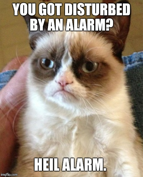 Grumpy Cat Meme | YOU GOT DISTURBED BY AN ALARM? HEIL ALARM. | image tagged in memes,grumpy cat | made w/ Imgflip meme maker
