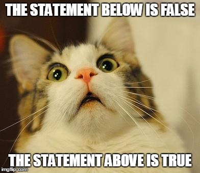RIP brain | THE STATEMENT BELOW IS FALSE THE STATEMENT ABOVE IS TRUE | image tagged in omg kitty | made w/ Imgflip meme maker