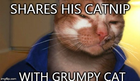 Good guy cat | SHARES HIS CATNIP WITH GRUMPY CAT | image tagged in memes,good guy greg,cats | made w/ Imgflip meme maker